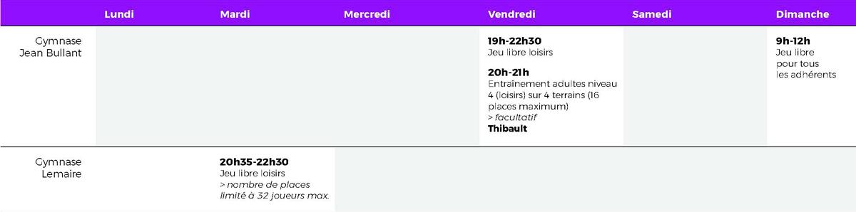 Creneaux Loisirs 2017 2018_usee_badminton